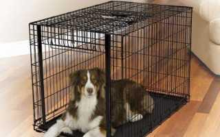 Как сделать клетку для собаки